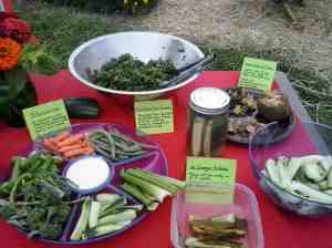 Anyone for a taste of our school garden?
