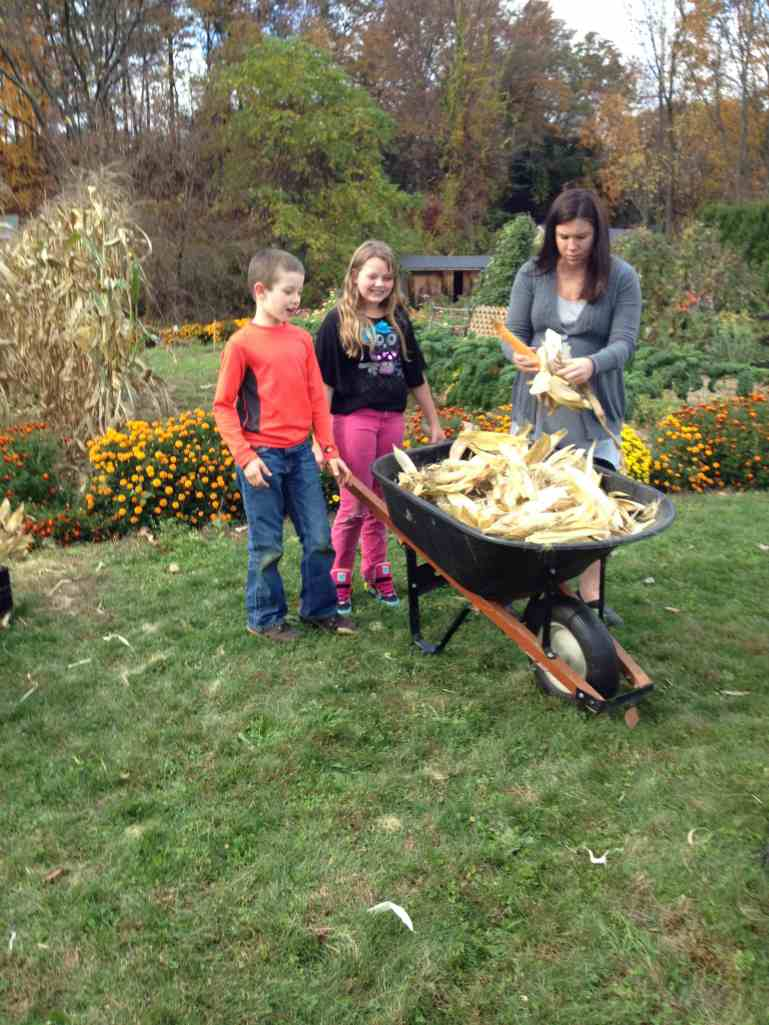 wheeling husks to the compost
