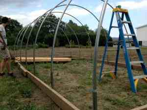 Hoop House Update