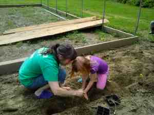 K planting sunflowers