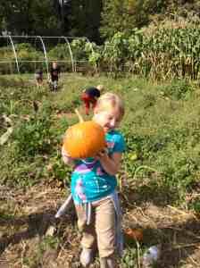 happy harvester