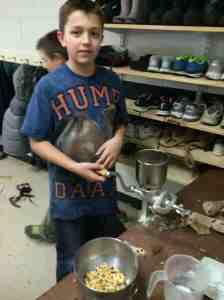 grinding flint corn kernels