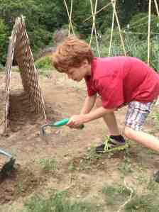 garden weeder