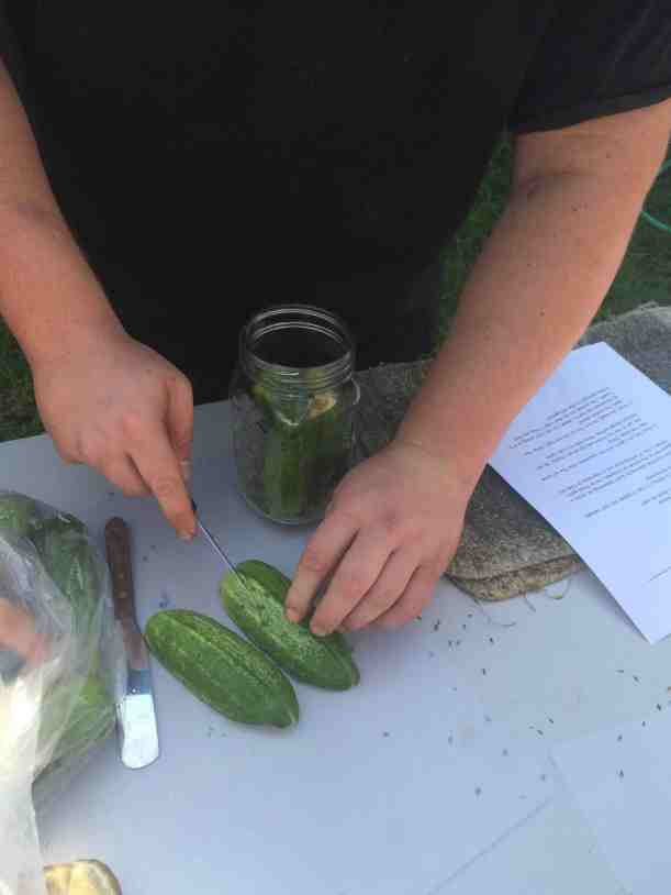 slicing cukes