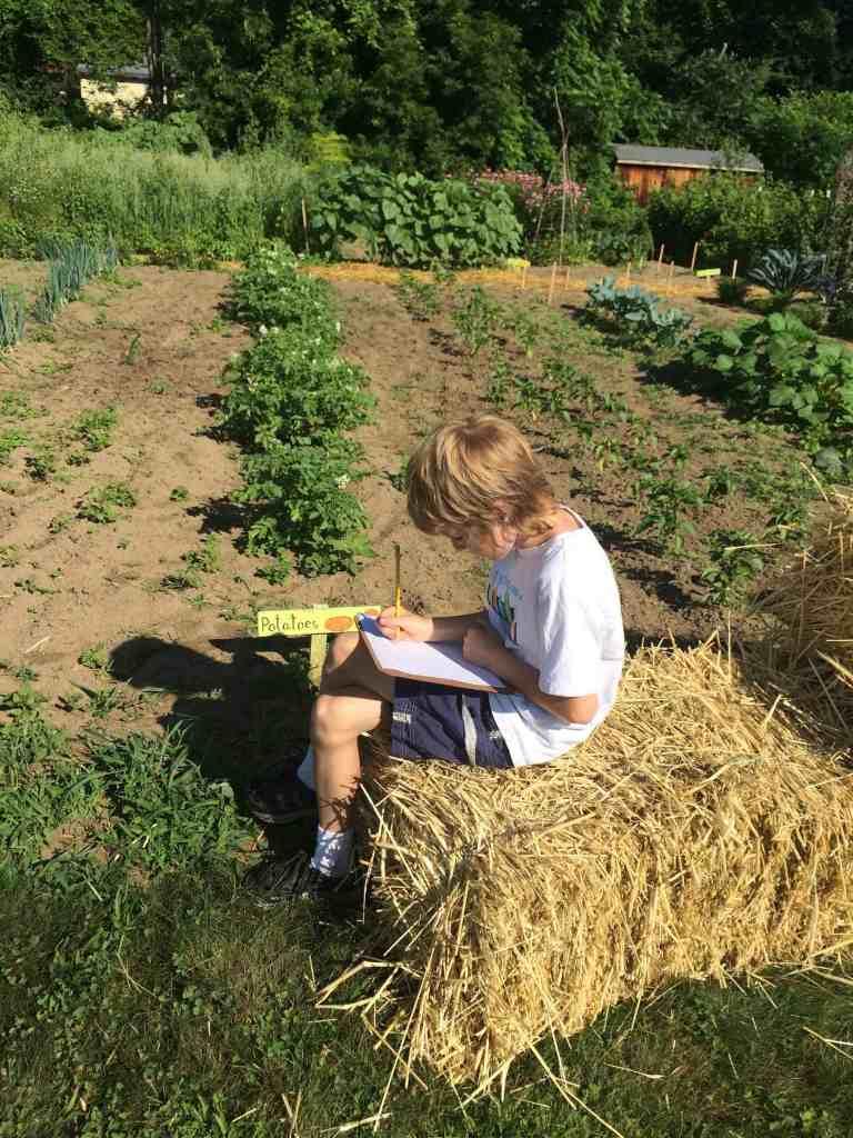 writing garden observations