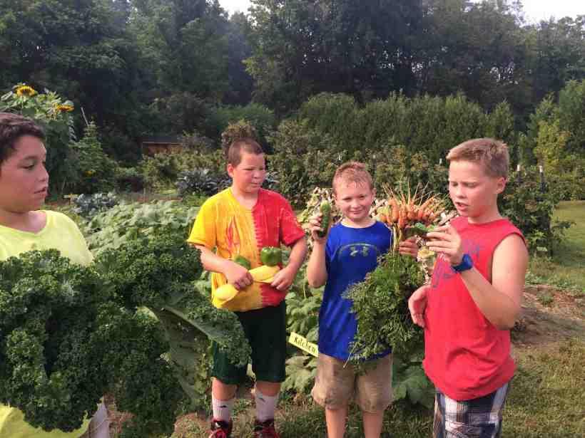 Harvesting: September