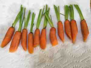 trimmed carrots