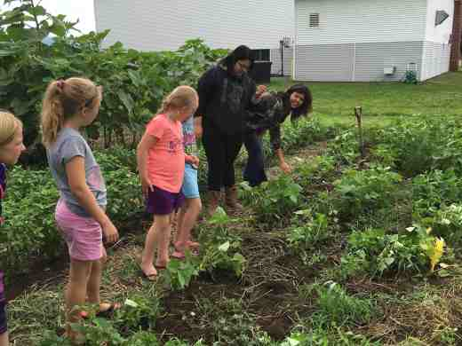teens showing campers the bean plants