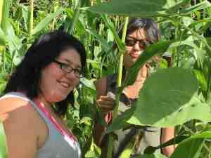 garden-crew-in-the-popcorn